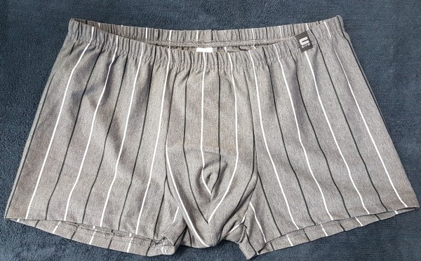 Herren Pants 66060 353 grau Gr.9